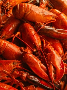 Best Seafood Restaurants In Salem Ma